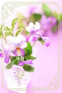 flower38